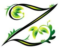 Letter Z Tattoo
