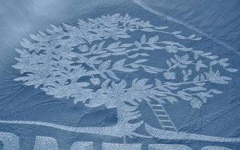 3023512-inline-snow-inline